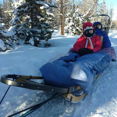 Two guests loaded in the sled.
